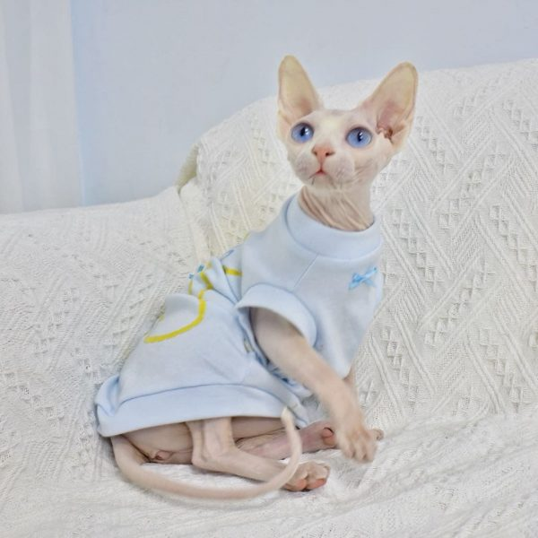 Summer vests for sphynx cat & hairless cat | Breathable bear pattern