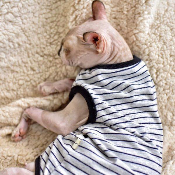 Cat summer vest & Tank Top for Sphynx | Halter breathable grey stripes