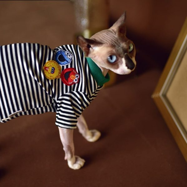 Shirts for Sphynx Cats & Hairless Cats   striped t-shirt, black white