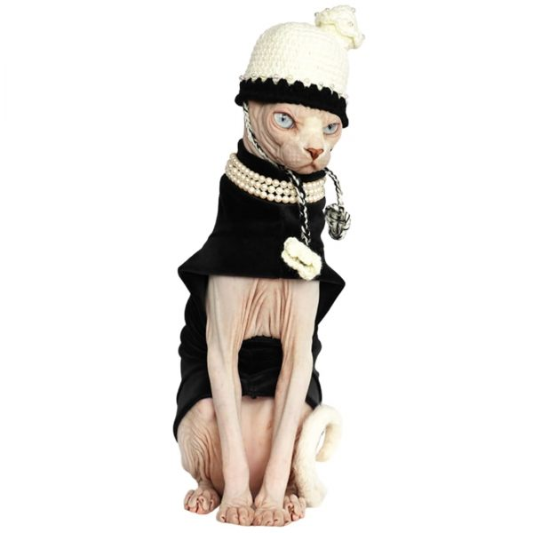 """Halloween Outfits For Sphynx 