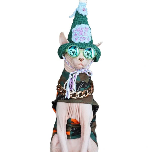 Sphynx Cat Halloween Costumes | Cat Halloween Costume, Cat Clothes