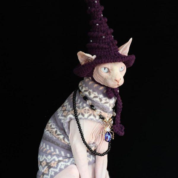 Hairless Cat In Halloween Costume   Cat Clothes-Retro color-Polar fleece