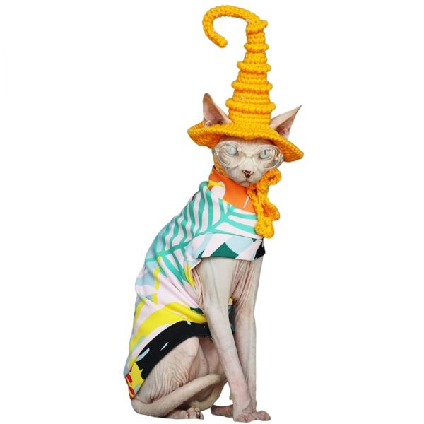 """Hairless Cat In Halloween Costume 