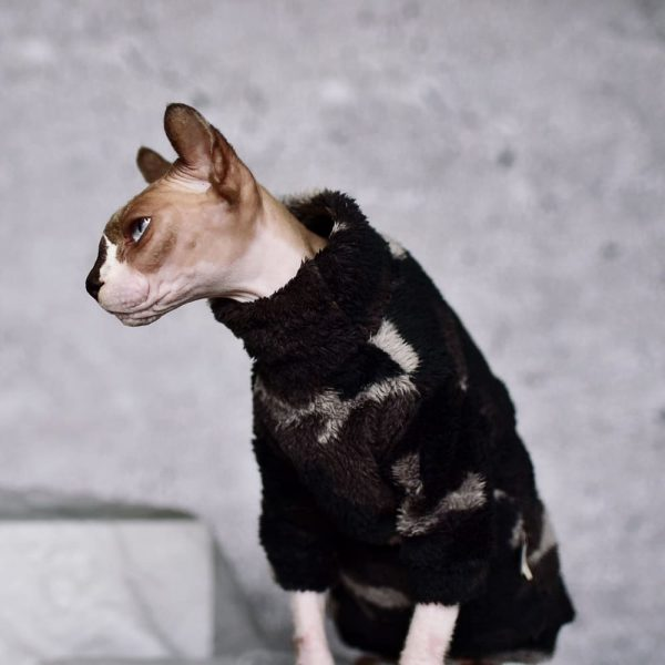 Hairless Cat In Sweater | Cat Sweater, Ugly Cat Sweater-Turtleneck