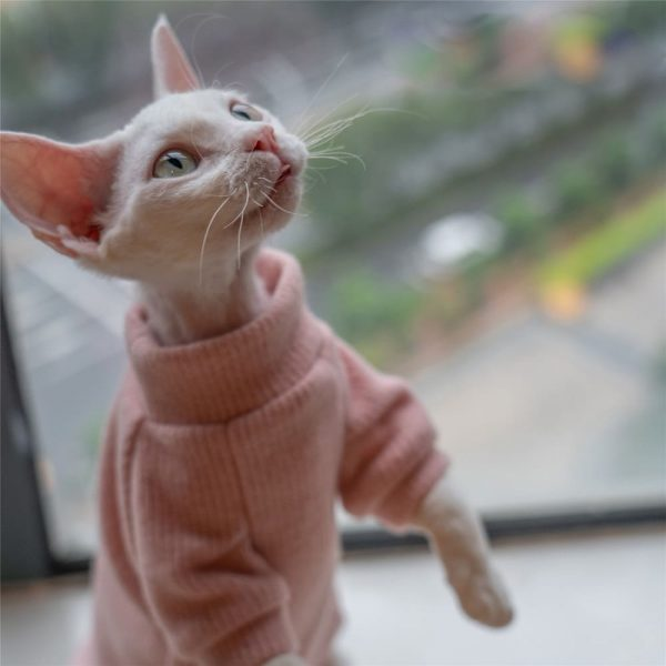 Hairless Cat Wearing Sweater | Cat Sweater, Ugly Cat Sweater-Turtleneck