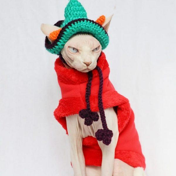 Hairless Cat Winter Coat | Cat Winter Coat, Sphynx Cat-Coral Fleece