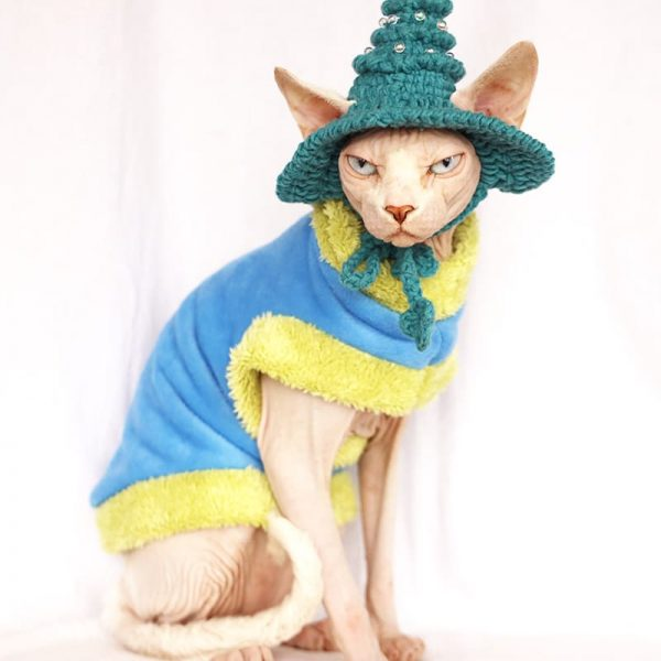 """A """"Must-have"""" cat halloween costumes"""