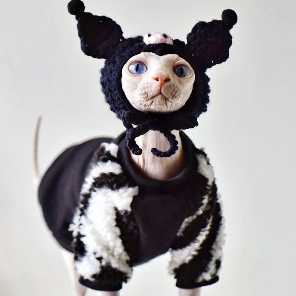 Black Winter Coat for Cats Cat Apparel, Cat in Clothes, Little Devil