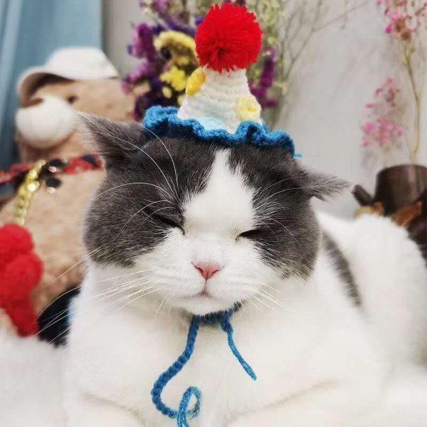 Cat Birthday Hats- Knitted Ice cream hat