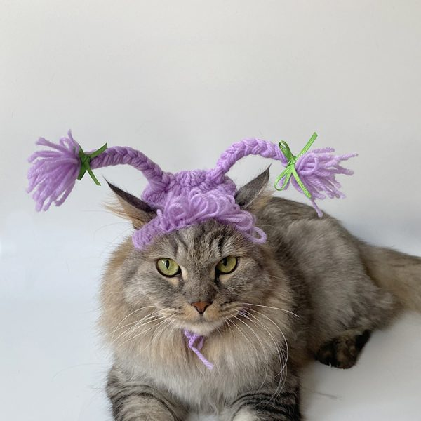 Cat Wearing Hat | Cats and Hats, Hand-knitted Hat, Purple Double Braids