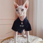 Cool Sphynx T-Shirt&Hairless Cat | Cat Apparel, Chinese Style cheongsam