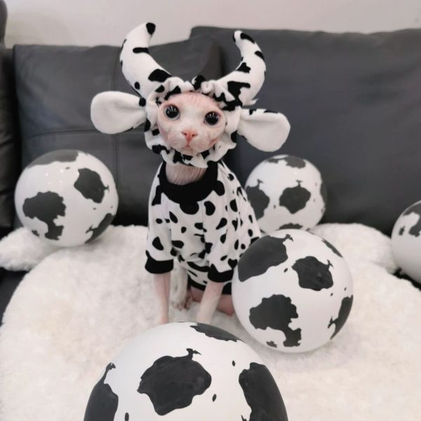 Cow Cat Shirts for Sphynx Cat Cotton black and white cow pattern