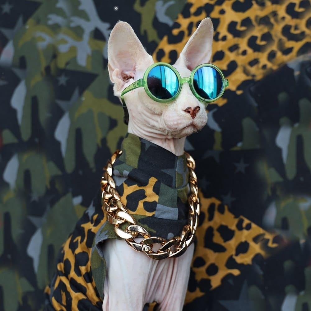 "Leopard Cat Clothes | A ""Must-have"" Ins Clothes For Cats, Cat Apparel"