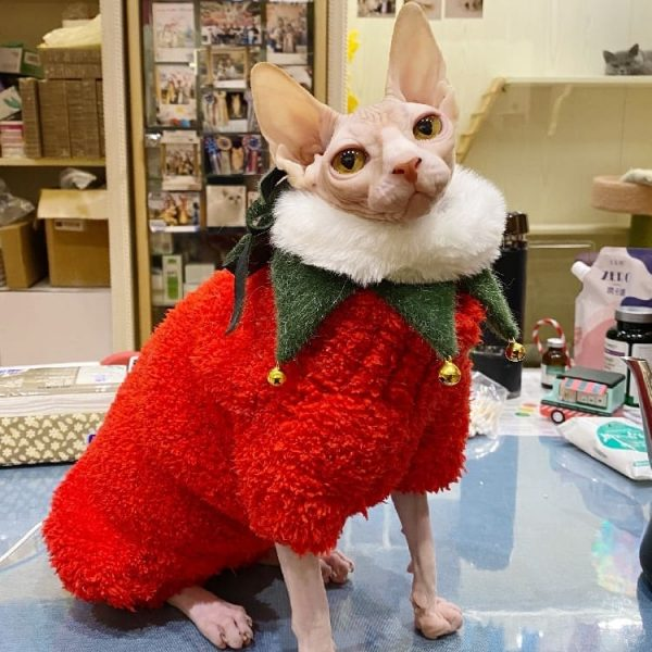 Cat Christmas Outfits with Bib | Christmas Cat Scarf Bib, Cat in Clothes