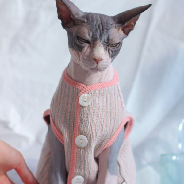 Cat Coat Vest | Cat Apparel, Cat in Clothes, Vest Button Cardigan