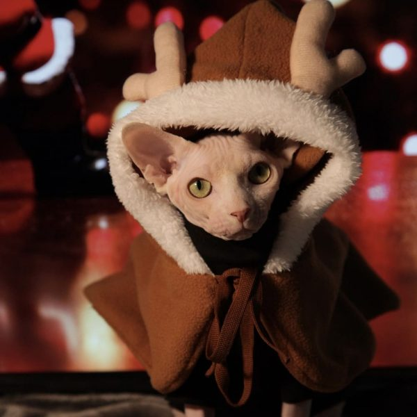 Cat with Christmas Outfit | Cloak Elk Winter Pet Costume Cosplay