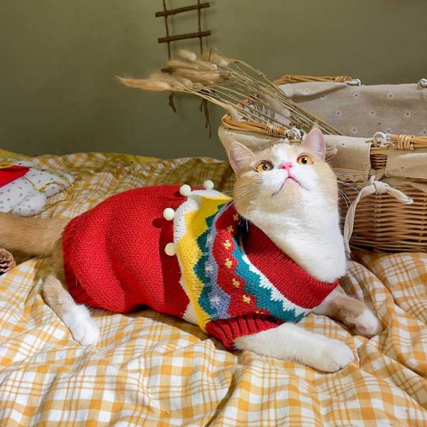 Christmas Sweater for Cats | Cat Christmas Outfit, Cat Christmas Costume