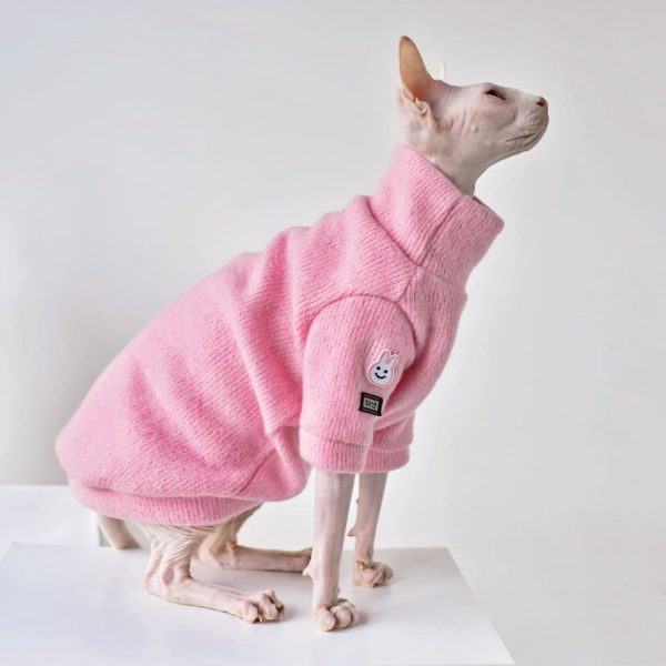 Sphynx Cat with Sweater | Hairless Cat In Sweater-Pink Simple Sweater